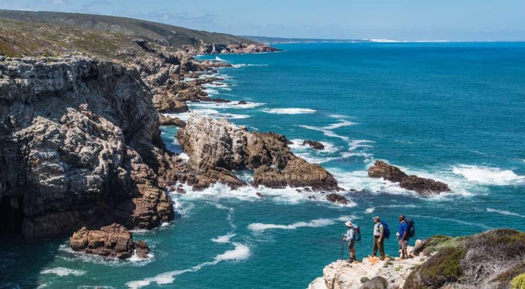 Randonnée du sentier des baleines en Afrique du Sud